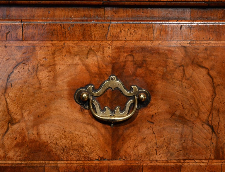 18th Century Veneered Walnut Tallboy 5