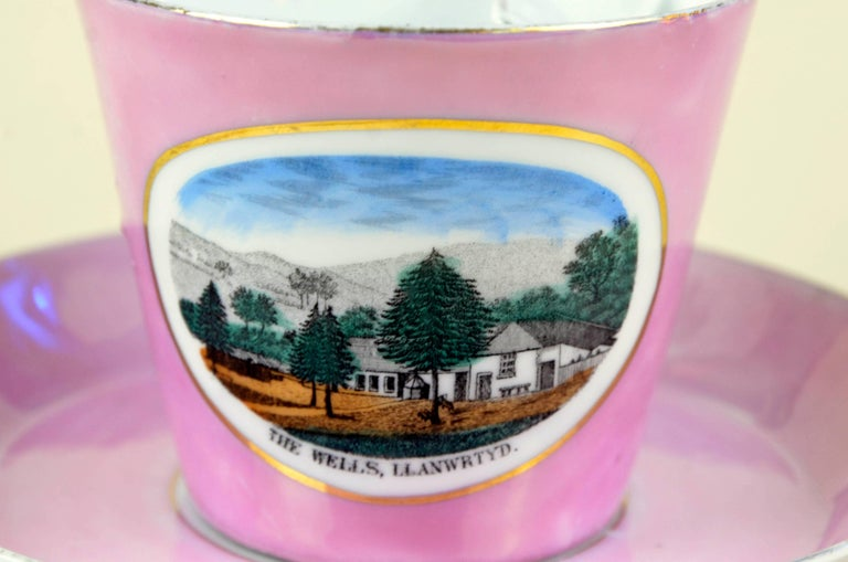 Early 20th Century 1900s Porcelain Souvenir Mustache Cup in Antique Pink Lustre Made in Germany For Sale