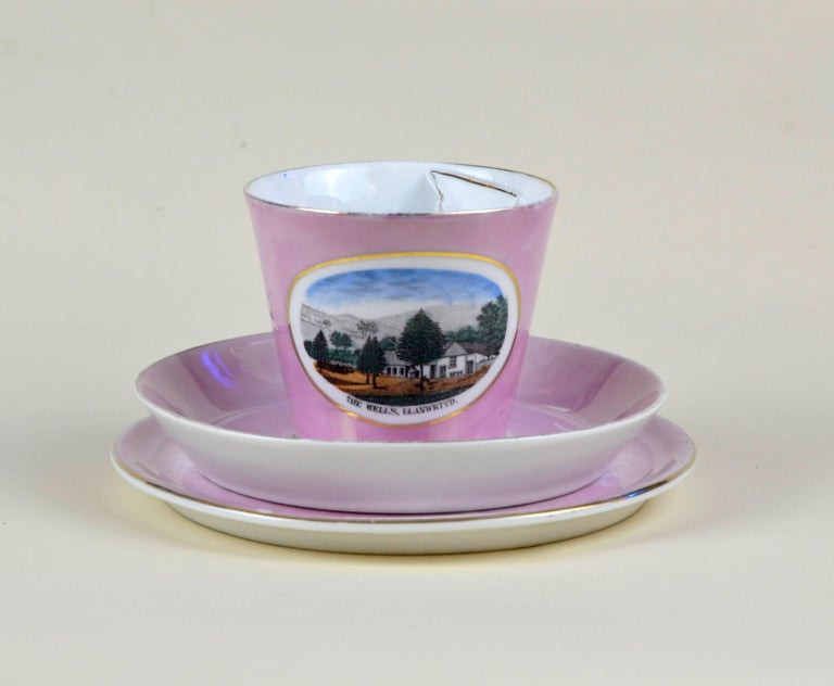 1900s Porcelain Souvenir Mustache Cup in Antique Pink Lustre Made in Germany For Sale 3