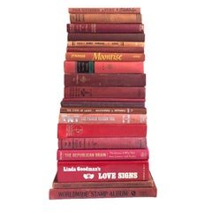 1920s 1960s Vintage Red Antique Book Shelfie Collection Set of 9