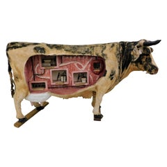 1920s Early Animatronic Motion Teaching Model Cow Movie Prop