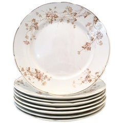 1920'S English Ironstone Dinner Plates by Johnson Brothers S/8
