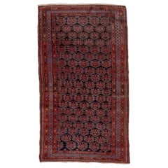 1920s Fine Antique Kurdish Rug, Navy and Red All-Over Field, Light Blue Accents