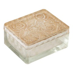 1923 René Lalique Zinnias Box Frosted Glass with Sepia Patina, Flowers