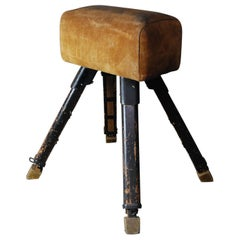1930 Leather Adjustable Pommel Horse by Gandy