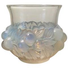 1930 Rene Lalique Prunes Vase in Opalescent Glass, Fruits