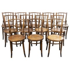 1930s Fischel French Bentwood Dining Chairs, Set of Twelve