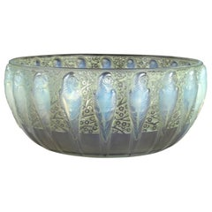 1931 René Lalique Perruches Bowl Opalescent Glass with Green Patina, Parrots