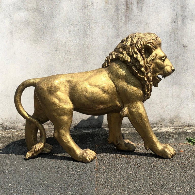 Gold lacquered golden bronze lion, from Paris from mid-20th century. Please note details such as the face, the foot and the tail. They are finely engraved and worked to give a sense of movement and greatness. Excellent condition, no restoration