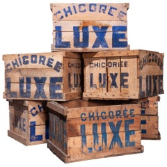1940s Chicoree Luxe Decorative Storage Wooden Crate