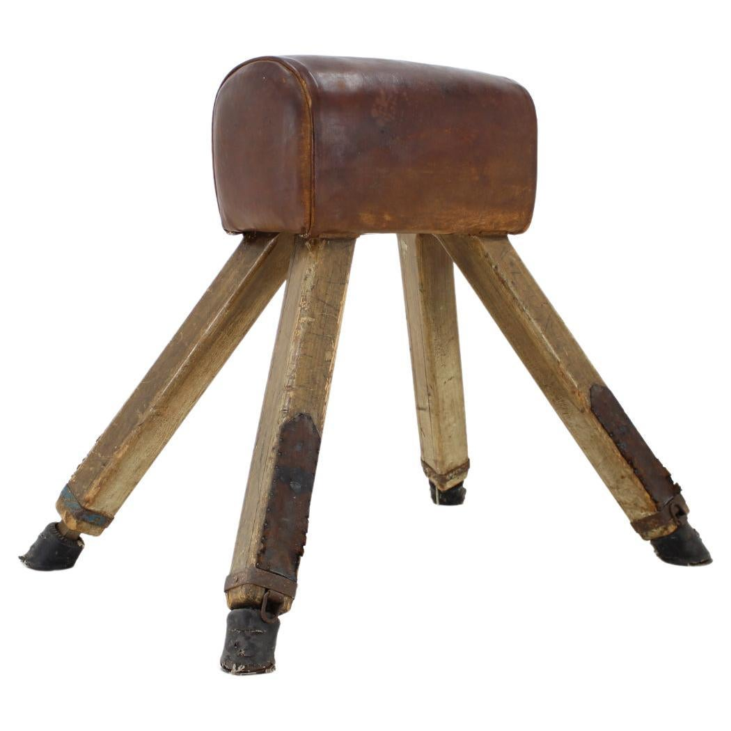 1940s Gym Leather Horse
