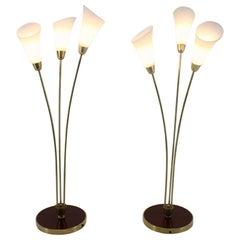 1940s Pair of Art Deco Floor Lamps, Czechoslovakia