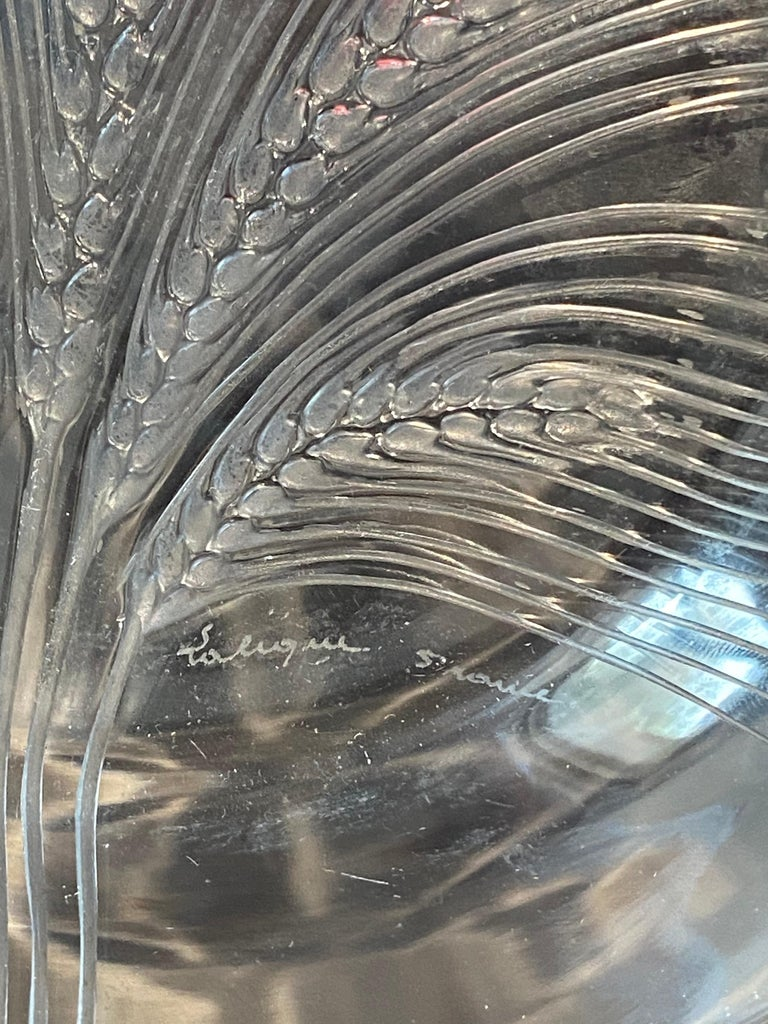 1945 René Lalique France Set of 8 Verneuil Crystal Plates, Corn Design In Good Condition For Sale In Boulogne Billancourt, FR