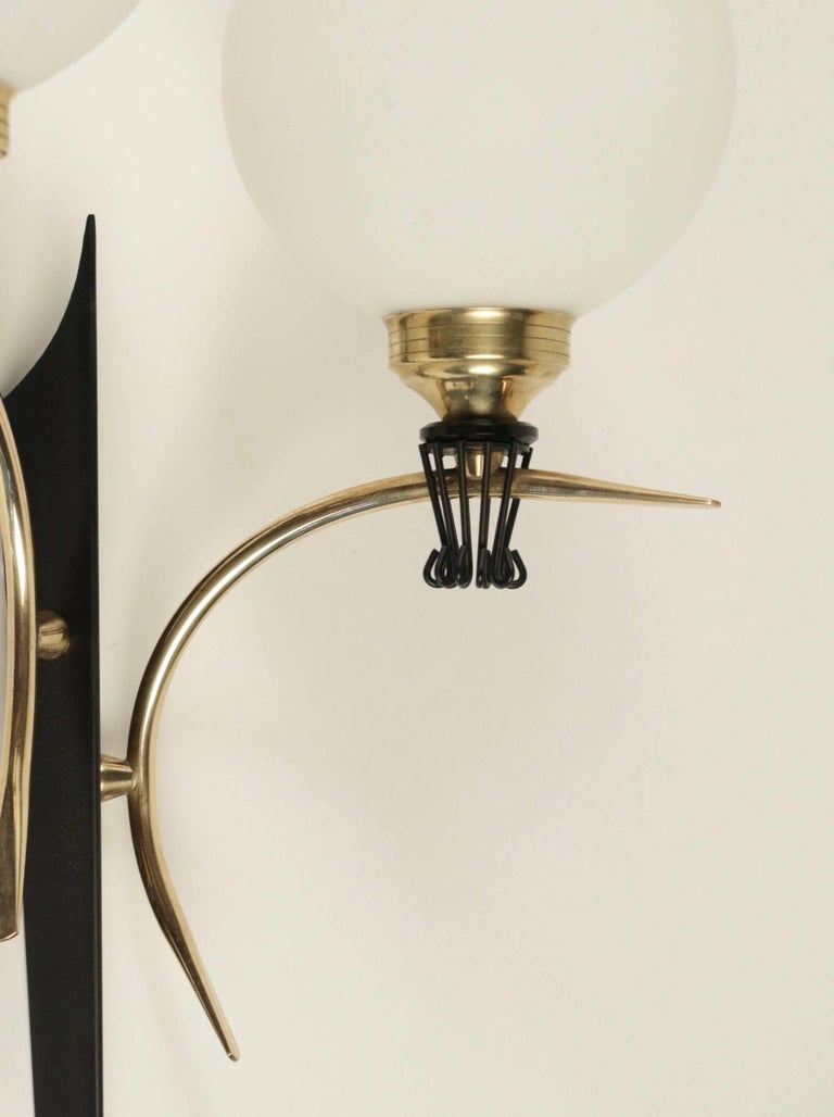 Large pair of sconce Maison Stilnovo, 1950.  The black lacquered back plate supports two curved brass arms. Two round opaline glass lampshades are highlighted by black collar and brass bulbs sockets.  Two bulbs per sconce.
