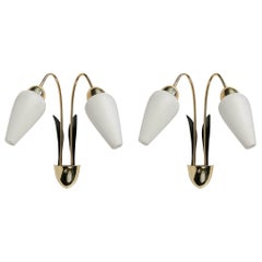 1950 Pair of Sconces, Flower Buds by Maison Lunel
