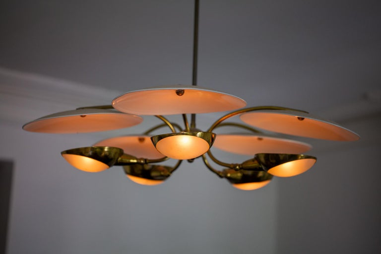 1950s Brass and Black Italian Chandelier For Sale 6