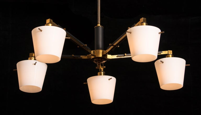 1950s, Brass Chandelier with Frosted with Glass Shades by Stilnovo, Italy 1
