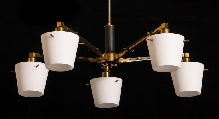 1950s, Brass Chandelier with Frosted with Glass Shades by Stilnovo, Italy 3