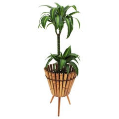 1950s French Mid-Century Modern Mediterranean Style Bamboo and Rattan Planter