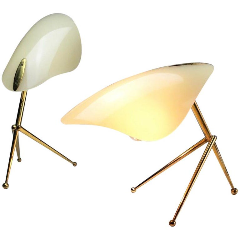 1950s German Brass Table Lamps Stilnovo Style with Perspex Tulip Shaped Shades For Sale
