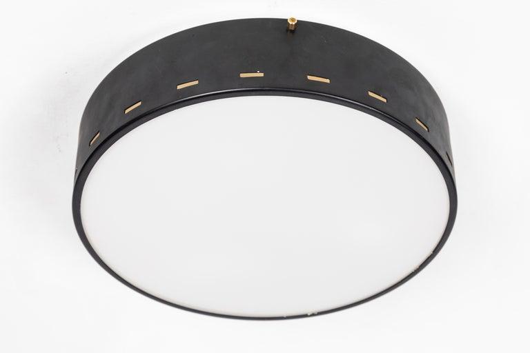 1950s Italian Ceiling Lamp Attributed to Bruno Gatta for Stilnovo For Sale 2