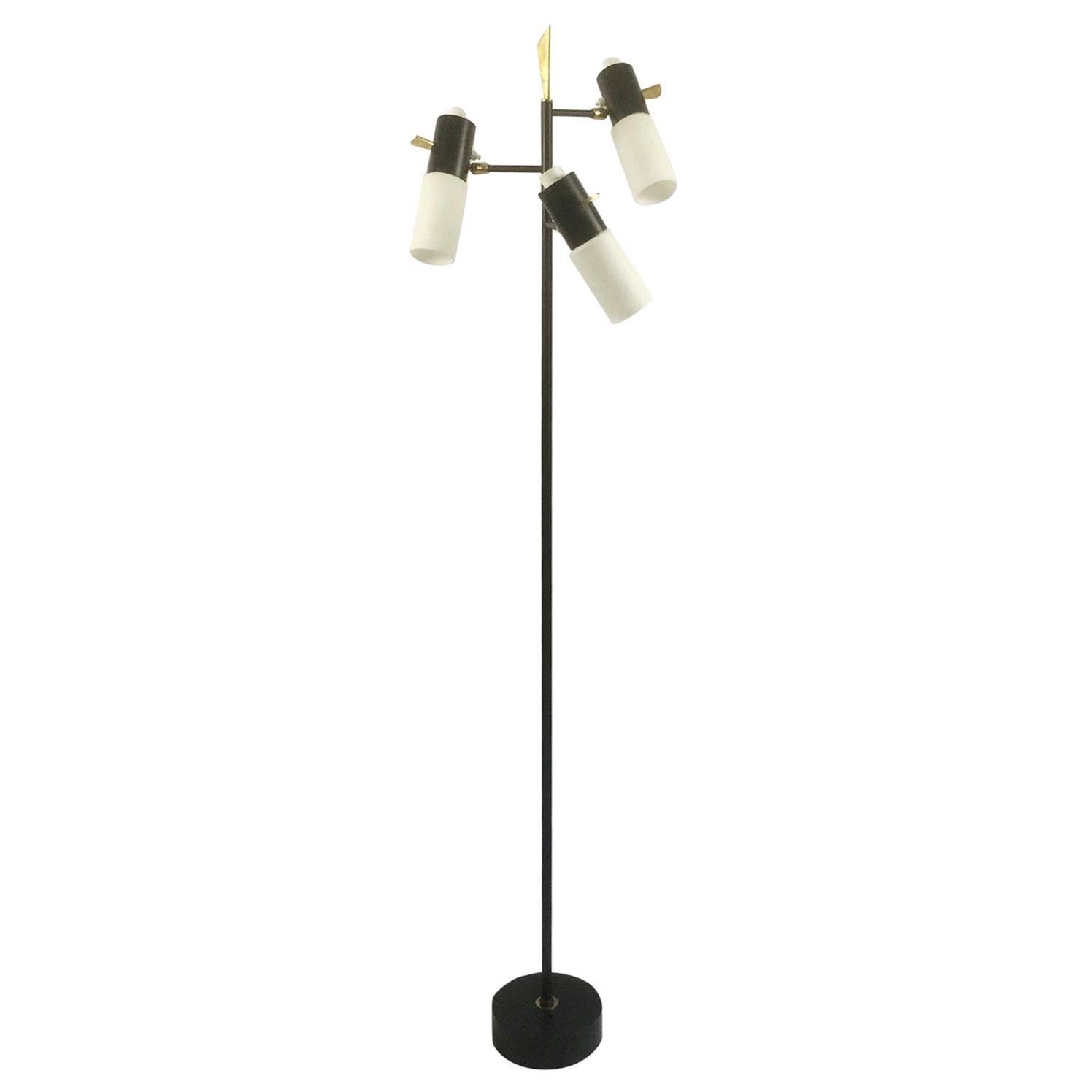1950s Maison Lunel Floor Lamp Attributed to Jean Boris Lacroix, France