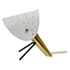 1950s Midcentury Perforated Metal & Brass Table Lamp or Desk Light by Ernst Igl