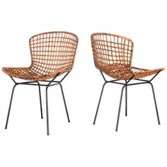 1950s Pair of Side Chairs in Iron and Reed by Carlo Hauner, Brazilian Modernism
