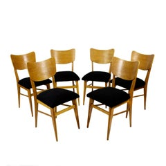 1950s Set of Six Chairs, Solid Oak and Oak Veneer, Black Wool, France
