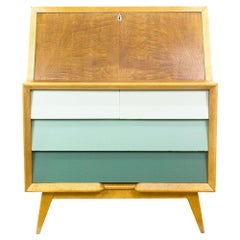 1950s Spanish Midcentury Bureau or Secretary Desk