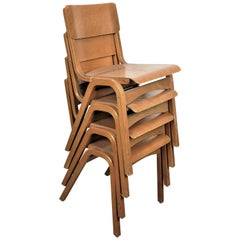 1950s Tecta Beech Dining Chairs in Beechwood, Set of Four, Other Quantities