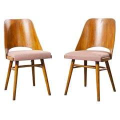 1950s Ton Upholstered Dining Chairs by Radomir Hoffman, Pair