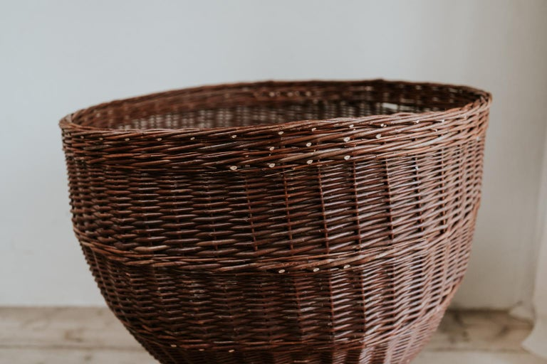 French 1950s Extra Large Rattan/Wicker Jardinière/Planter For Sale