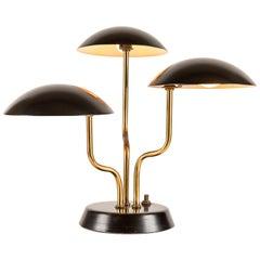 1952 Gino Sarfatti 3-Shade Table Lamp for Arteluce