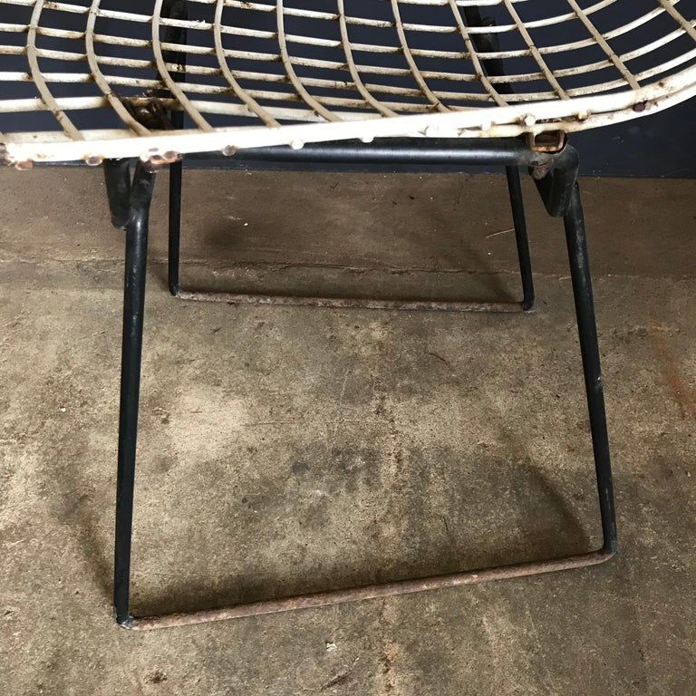 1952, Harrie Bertoia for Knoll International a Set of Wire Dining Chairs For Sale 3