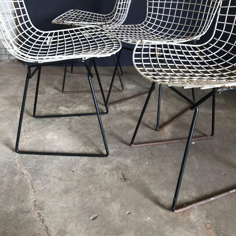1952, Harrie Bertoia for Knoll International a Set of Wire Dining Chairs For Sale 4