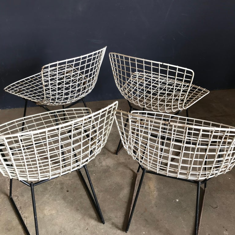 1952, Harrie Bertoia for Knoll International a Set of Wire Dining Chairs For Sale 5