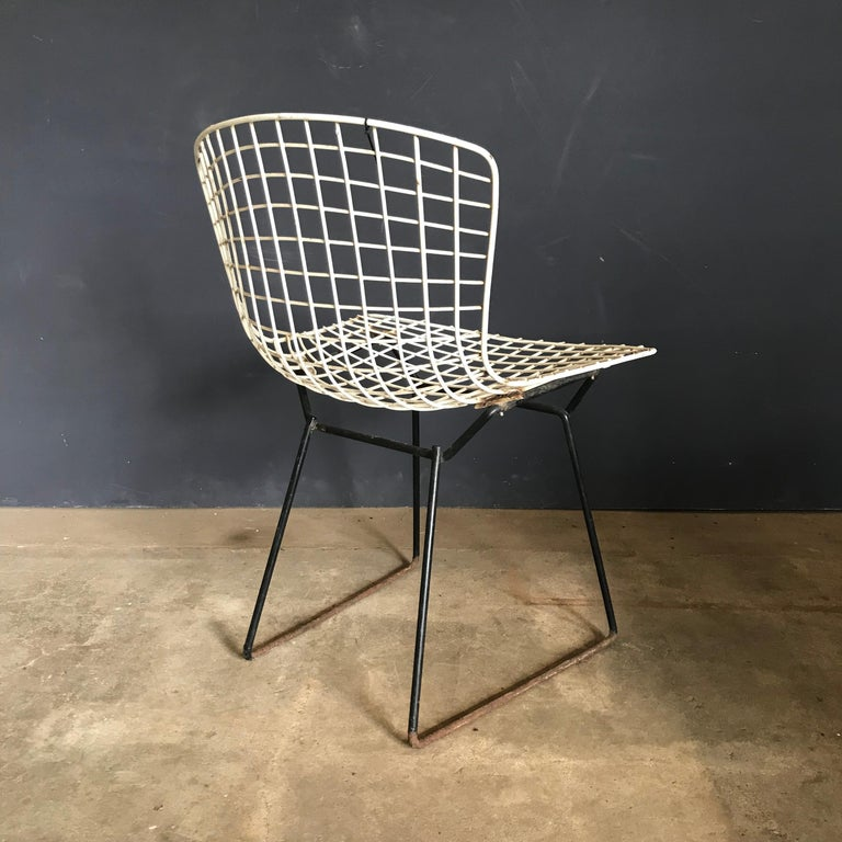 1952, Harrie Bertoia for Knoll International a Set of Wire Dining Chairs For Sale 7
