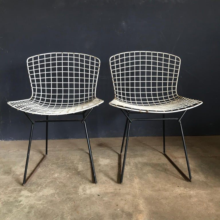 1952, Harrie Bertoia for Knoll International a Set of Wire Dining Chairs For Sale 9