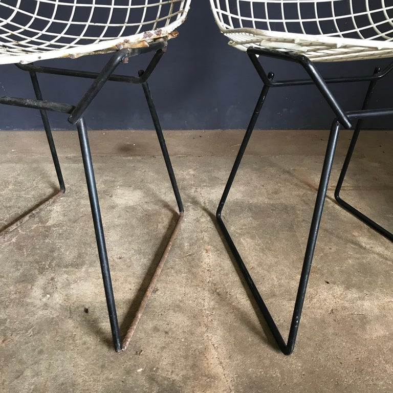 1952, Harrie Bertoia for Knoll International a Set of Wire Dining Chairs For Sale 11