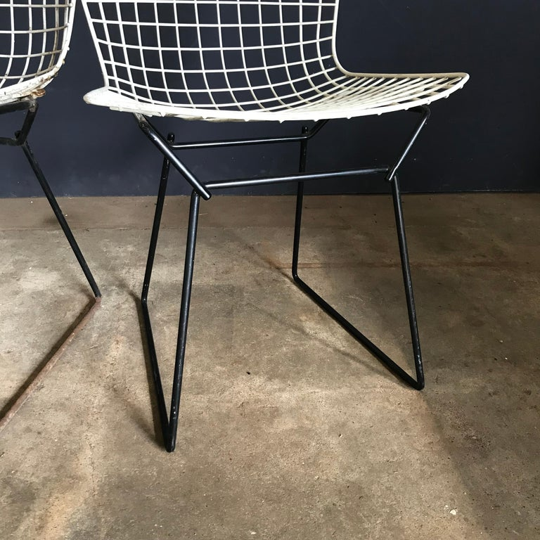 1952, Harrie Bertoia for Knoll International a Set of Wire Dining Chairs For Sale 12