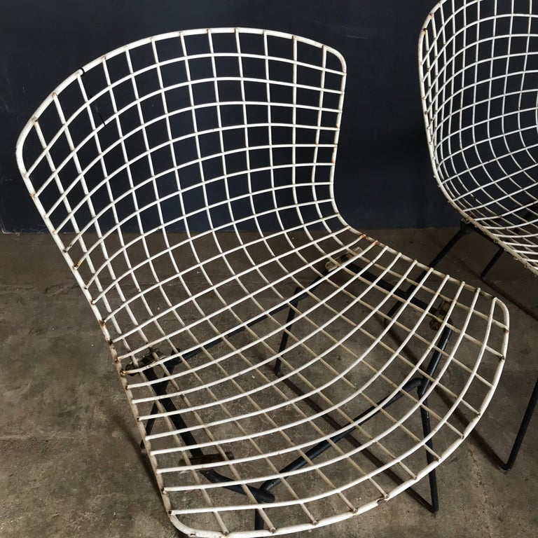 Mid-Century Modern 1952, Harrie Bertoia for Knoll International a Set of Wire Dining Chairs For Sale
