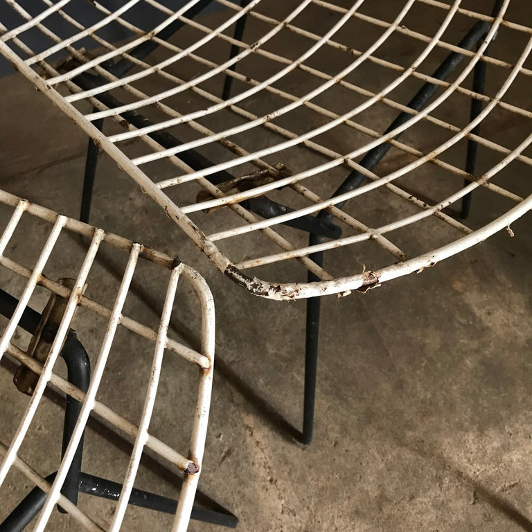 1952, Harrie Bertoia for Knoll International a Set of Wire Dining Chairs In Good Condition For Sale In Amsterdam, North Holland