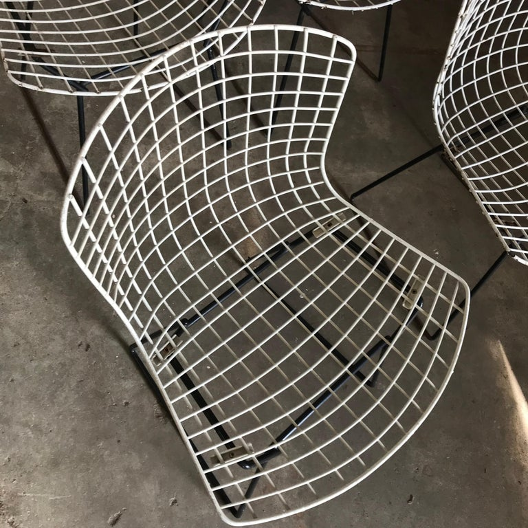 1952, Harrie Bertoia for Knoll International a Set of Wire Dining Chairs For Sale 1