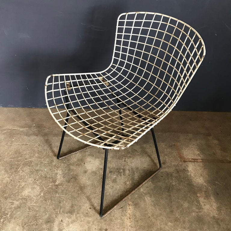 1952, Harrie Bertoia for Knoll International a Set of Wire Dining Chairs For Sale 2