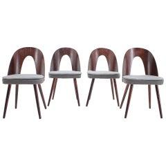 1960s Antonin Suman Dining Chairs, Set of 4