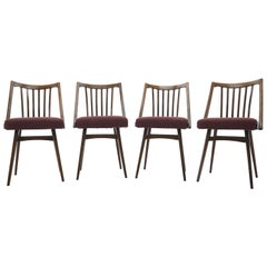 1960s Antonin Suman Dining Chairs, Set of 4