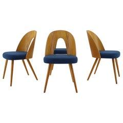 1960s Antonin Suman Set of Four Dining Chairs, Czechoslovakia