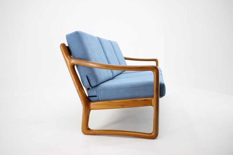 1960s Danish Teak Organic 3-Seat Sofa In Good Condition For Sale In Praha, CZ