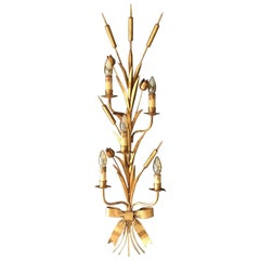 1960s Huge French Bulrush Wall Sconce